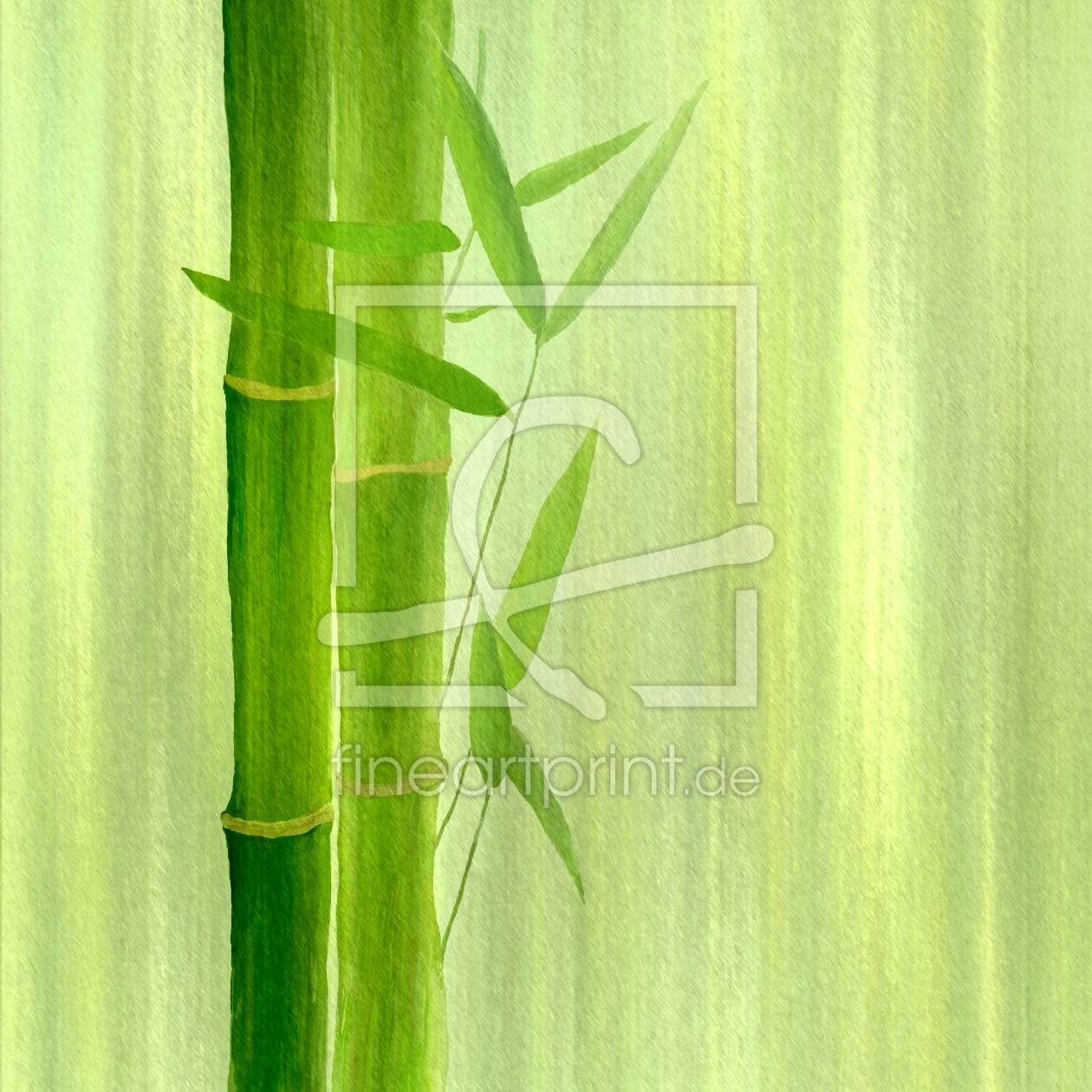 Bambus As A Canvas Print 10163167 Fine Art Print