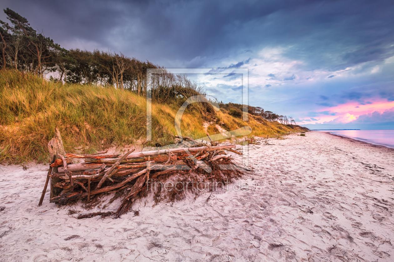 Urwüchsiger Weststrand Darß Prerow Ostsee as a ca...