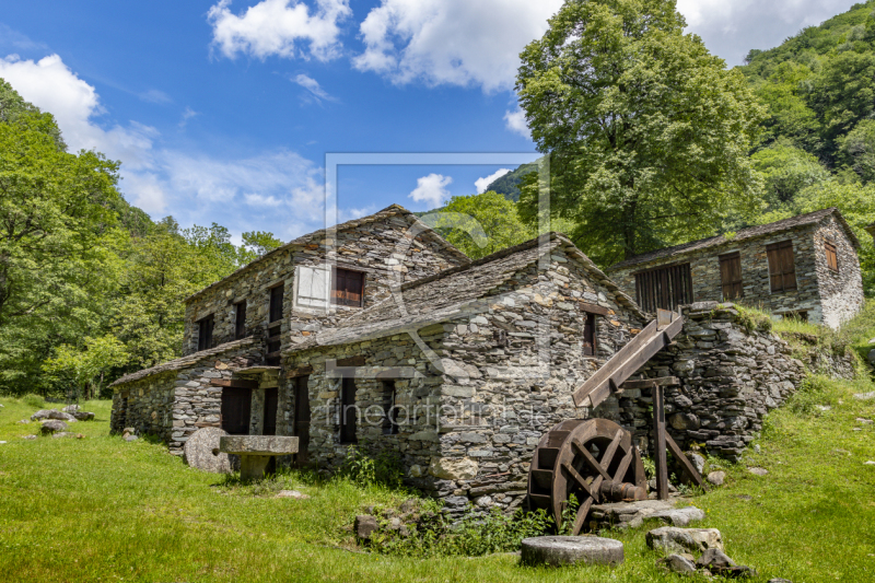 freely selectable image excerpt for your image on Canvas