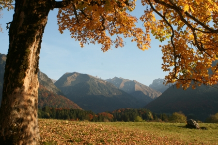 Picture no: 9387418 Oktoberlandschaft bei Oberstdorf Created by: widipic