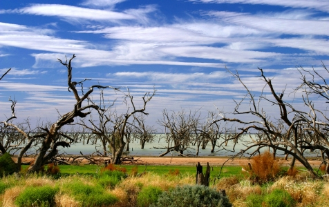 Picture no: 9389778 Menindee Lakes Created by: MisterMister