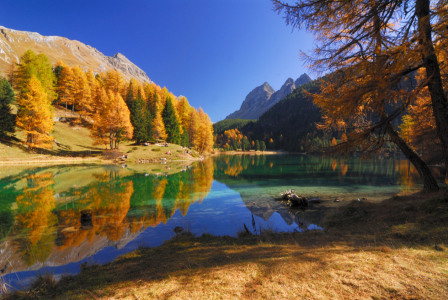 Picture no: 9406652 Silence Created by: suteracher