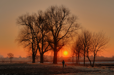Picture no: 9408858 Roter Morgen Created by: PeterTost