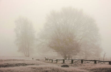 Picture no: 9466174 Nebel Created by: Klaus Kehrls