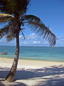 Picture no: 9560942 Strand Mauritius Created by: Venecia