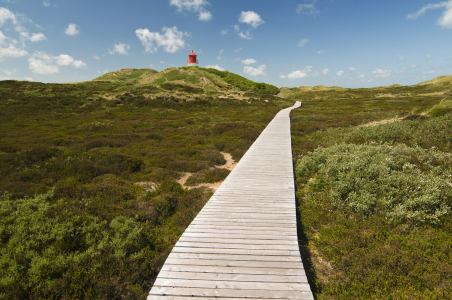 Picture no: 9593592 Amrum_10 Created by: danielschoenen