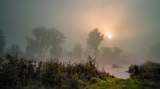 Picture no: 9824156 morning mist Created by: KamboDscha