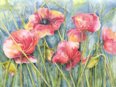 Picture no: 9842680 Mohn Created by: JitkaKrause