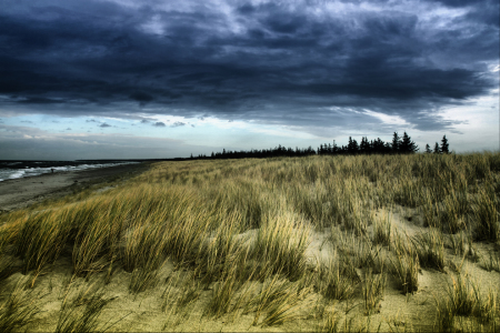 Picture no: 9865552 Dramatic Dune Created by: FotoDeHRO