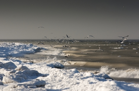 Picture no: 9933102 Nordsee im Winter Created by: JuliArt