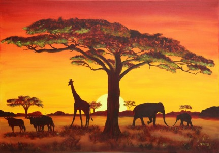Picture no: 9993915 Sonnenuntergang in Afrika Created by: Petra Koob