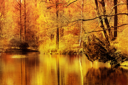 Picture no: 10000657 Herbstfarben Created by: Atteloi