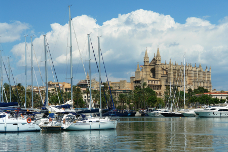 Picture no: 10005915 Palma de Mallorca, Yachthafen und Kathedrale Created by: Frank Rother