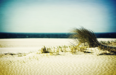 Picture no: 10059705 beach Created by: Timo Geble