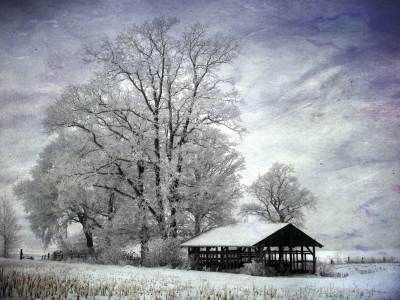Picture no: 10082779 Winteridylle Created by: yammay