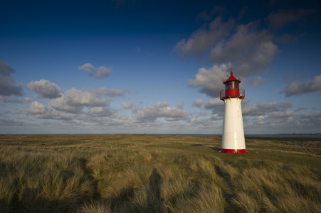 Picture no: 10090946 Sylt #8 Created by: danielschoenen