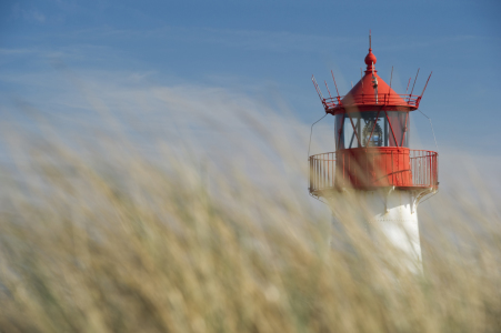 Picture no: 10091064 Sylt #10 Created by: danielschoenen