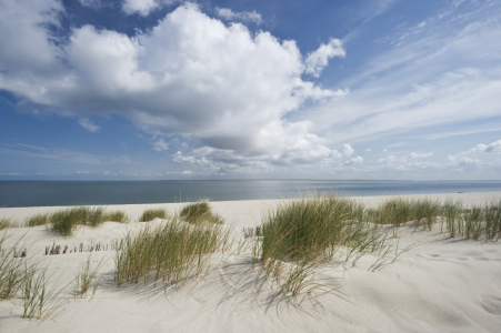 Picture no: 10092266 Sylt  #14 Created by: danielschoenen