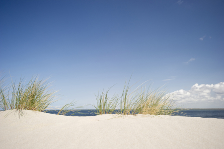 Picture no: 10105254 Sylt #36 Created by: danielschoenen