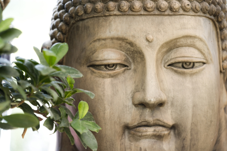 Picture no: 10108456 Buddha #1 Created by: danielschoenen