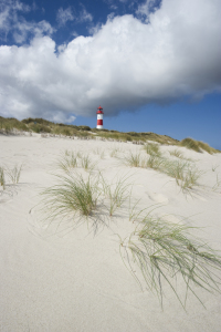Picture no: 10123902 Sylt #46 Created by: danielschoenen