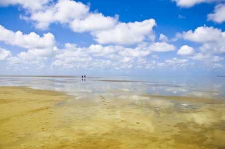 Picture no: 10134972 Sandbank Created by: Fuchsmedia