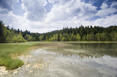 Picture no: 10157964 Spiegelsee Created by: danielschoenen