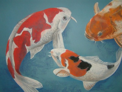 Picture no: 10206731 Koi - Karpfen Created by: Art2010