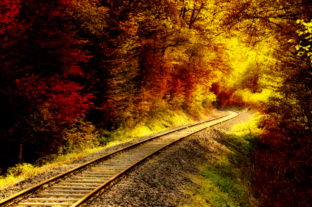 Picture no: 10234477 Herbst Created by: spima