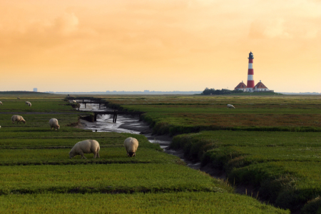 Picture no: 10285985 Westerhever Leuchtturm Created by: Delphine