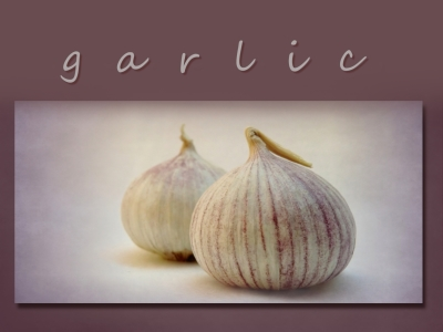 Picture no: 10328665 garlic Created by: Anja Otto