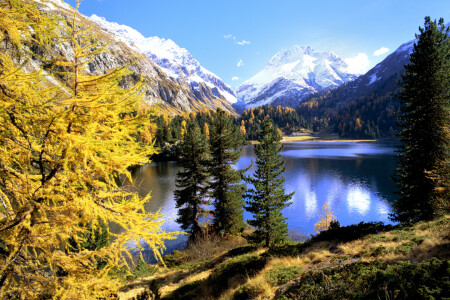 Picture no: 10367693 Bergsee im Herbst Created by: suteracher