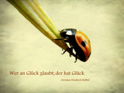 Picture no: 10389545 Wer an Glück glaubt Created by: Heike Hultsch
