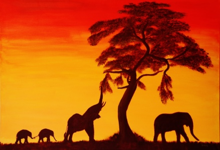 Picture no: 10391107 Sonnenuntergang in Afrika Created by: Petra Koob