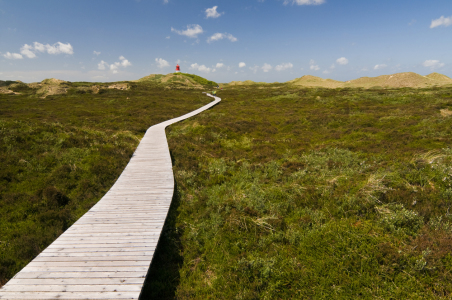 Picture no: 10392263 Weite auf Amrum Created by: danielschoenen
