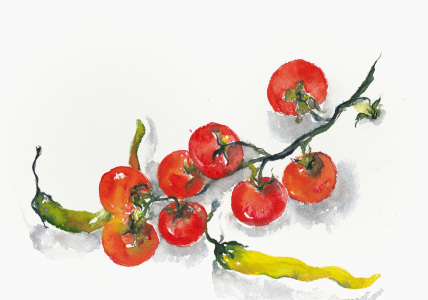 Picture no: 10407407 Tomaten und Peperoni Created by: JitkaKrause