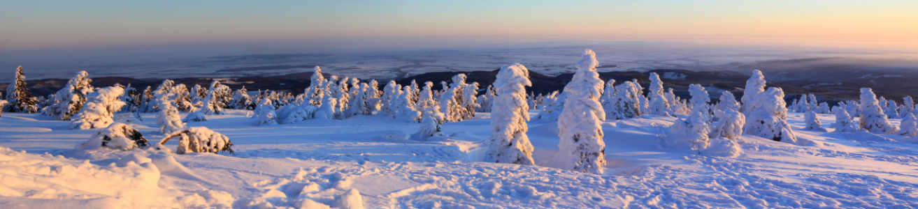 Picture no: 10410019 Winterpanorama am Brocken 02 Created by: BilderWerkstatt