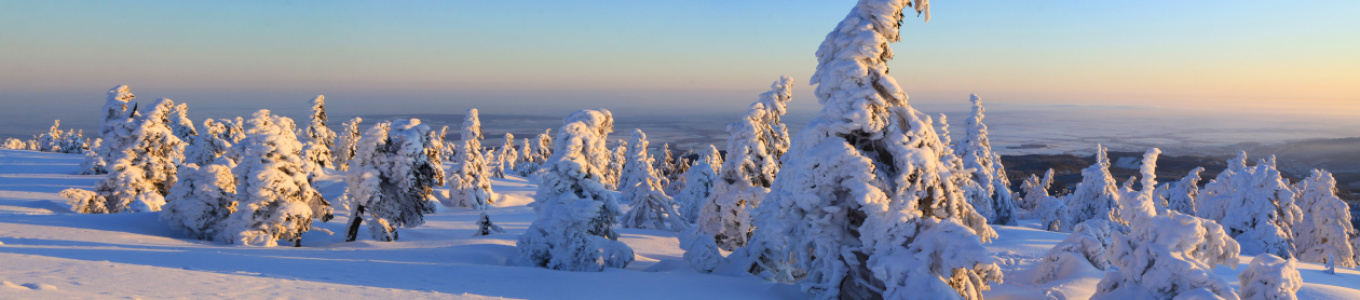 Picture no: 10410097 Winterpanorama am Brocken 03 Created by: BilderWerkstatt