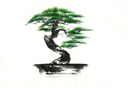 Picture no: 10412895 Bonsai Created by: JitkaKrause