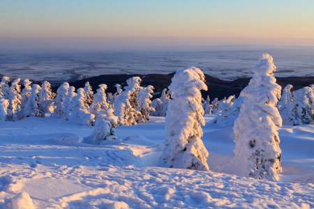 Picture no: 10419559 Verschneite Winterlandschaft am Brocken Created by: BilderWerkstatt