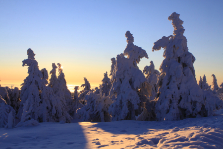 Picture no: 10419577 Verschneite Winterlandschaft am Brocken Created by: BilderWerkstatt