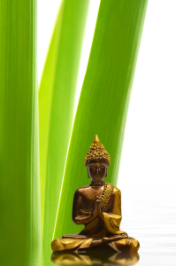 Picture no: 10437321 Buddha Created by: Atteloi
