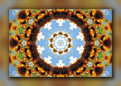 Picture no: 10479506 Die Sonnenblume 2 Created by: falconer59