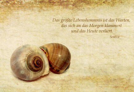 Picture no: 10481138 Lebenshemmnis Created by: Heike Hultsch