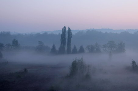 Picture no: 10512231 Morgennebel - pur - Created by: Heike Hultsch