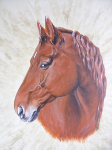 Picture no: 10514995 Zuchthengst Waikas As Created by: Eva-Maria Oeser