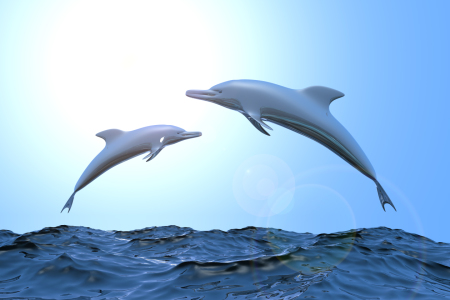 Picture no: 10516965 Dolphins II Created by: dresdner