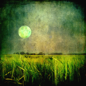 Picture no: 10570562 Moonlight over the small village Created by: yammay