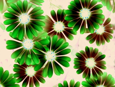 Picture no: 10603846 Flower Power Created by: GUGIGEI