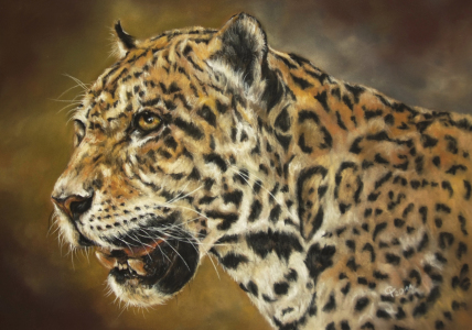 Picture no: 10611086 Jaguar Created by: Frenken-Art